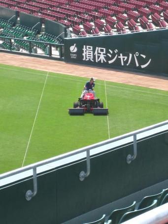 芝刈り1.JPG