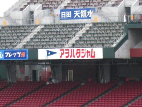アオハタ.JPG