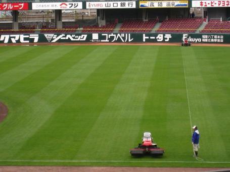 芝刈り.JPG