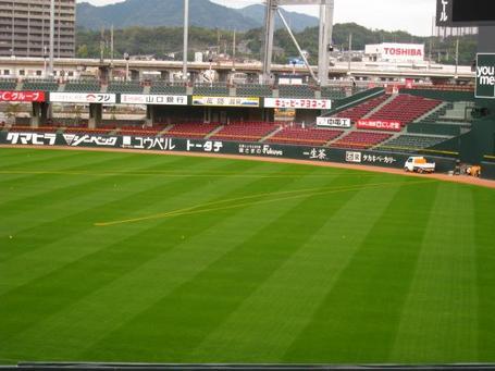 芝生1.JPG