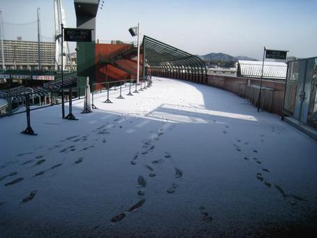 コンコース雪1.JPG