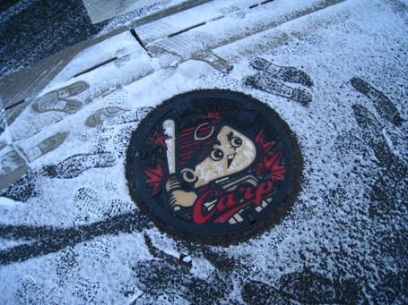マンホール雪.JPG