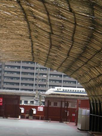 竹トンネル2.JPG