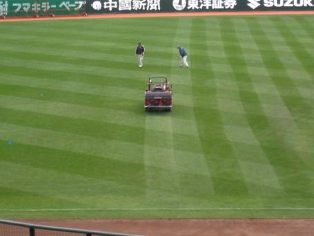 芝手入れ4.JPG