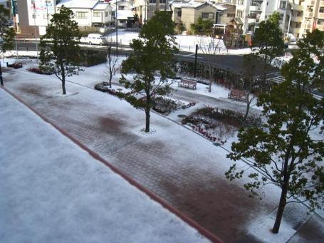 雪周辺.JPG